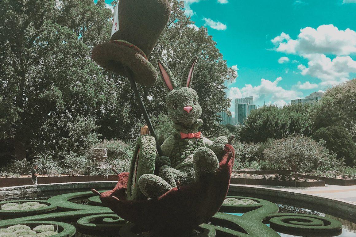 white rabbit atlanta botanical garden