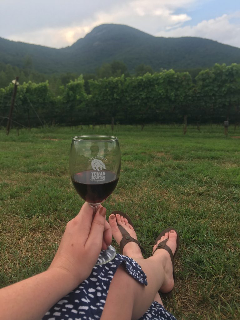 glass of red wine with yonah mountain in background at yonah mtn vineyard